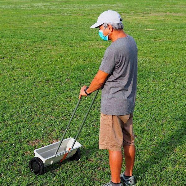 buy lawn seed dispenser online